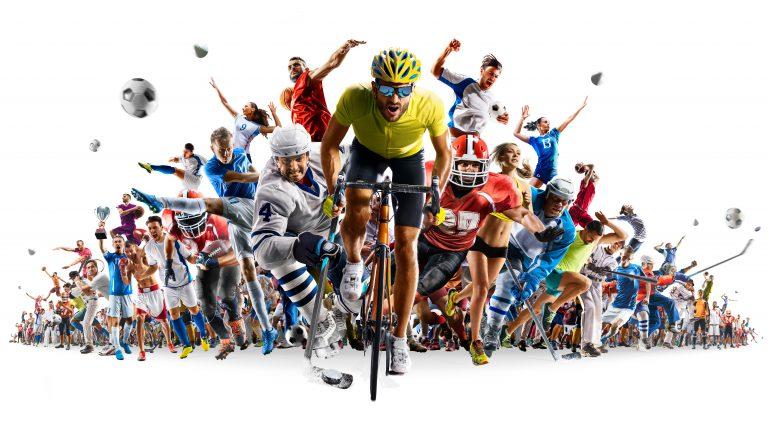 business、sportbusiness
