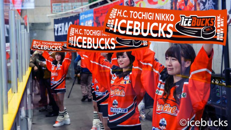 icebucks